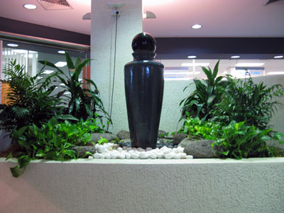 It is a good idea to install drip irrigation to indoor plants.